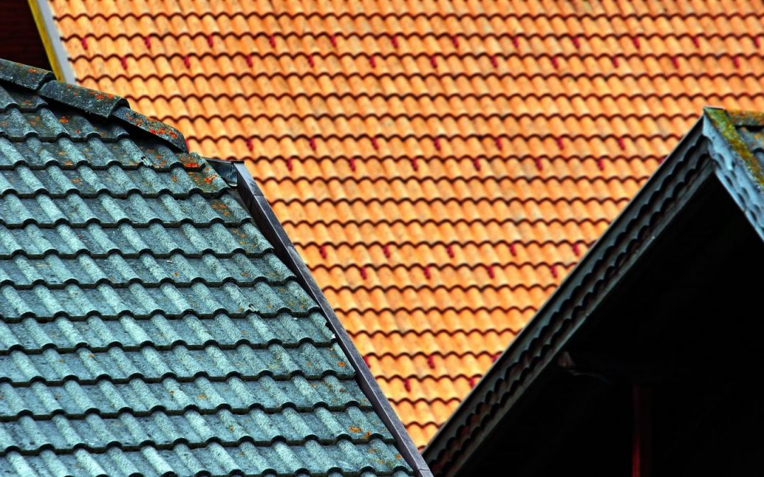 A Guide to Buying the Right Roof